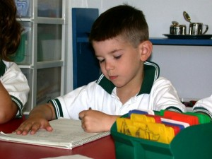 Montessori Boy Studying